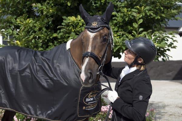 Exclusive-Horsewear-prata-med-häst