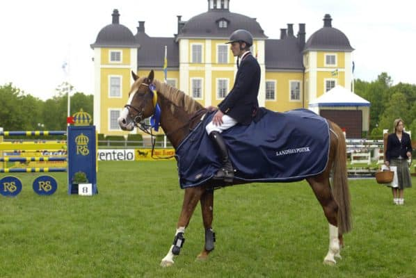Inspiration-från-Exclusive-Horsewear-21