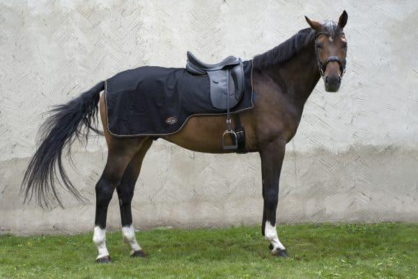ridtacke-MONTENMEDIO-ull-Exclusive-Horsewear-svart