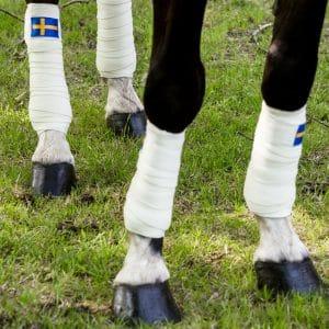 Exclusive Horsewear på Björnöslott med benlindor SWEDEN