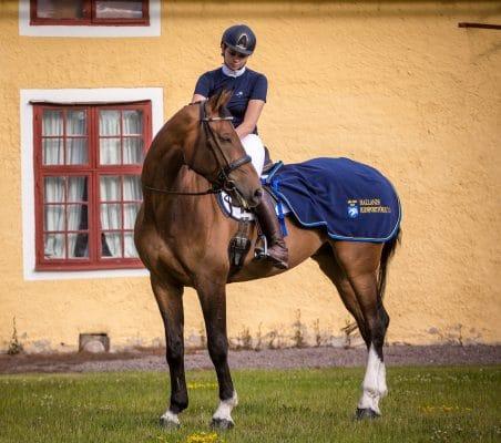 Exclusive Horseware på Björnöslott med Hallands Ridsportförbund 2