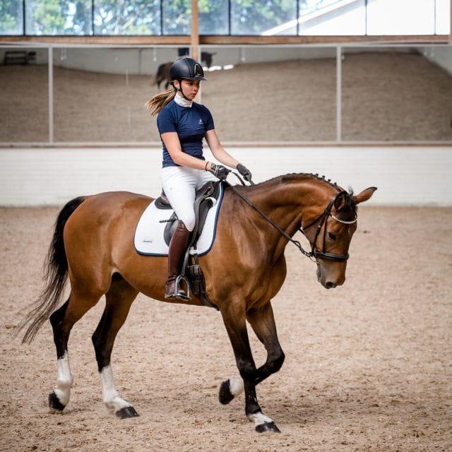 Exclusive Horseware på Björnöslott med schabrak Tellus dressyr