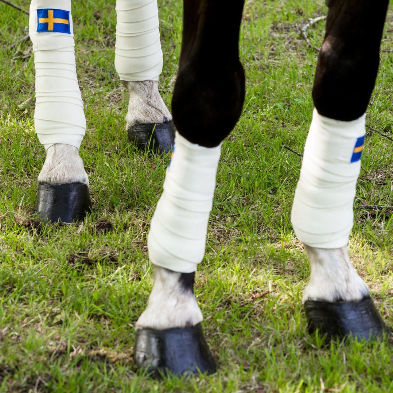 Exculsive Horseware på Björnöslott med tävlingstäcke Sweden